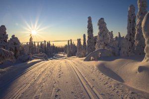 snowy road pexels.com by pixbay.com