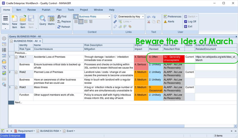 Risk register in Cradle - Don't leave it to a Seer